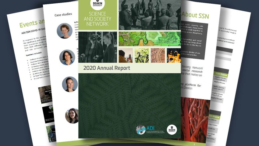 2020 SSN Annual Report