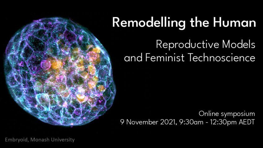 Remodelling the Human: Reproductive Models and Feminist Technoscience
